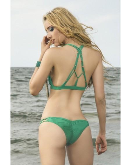 PARADISUS GREEN